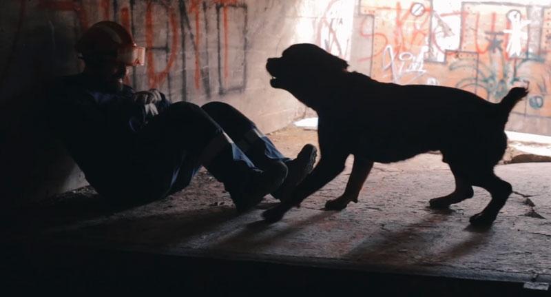 uab_caninas